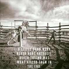 Cowboy Quotes, True Words, Work Hard, Movie Posters, Cowboys, Poetry, Working Hard, Film Poster, Hard Work