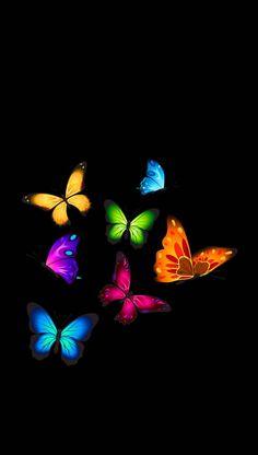 Colorful Butterflies on Black Wallpaper Butterfly Wallpaper Iphone, Heart Wallpaper, Love Wallpaper, Cellphone Wallpaper, Colorful Wallpaper, Galaxy Wallpaper, Wallpaper Backgrounds, Black Wallpaper, Iphone Wallpaper