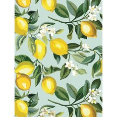 Give walls an zesty transformation with White Lemon Zest Peel and Stick Wallpaper by RoomMates. This brightly-colored pattern creates a energizing vibe with minimal effort. Modern and fresh, create a charming space in minutes with our peel and stick Wallpaper Panels, Wallpaper Roll, Peel And Stick Wallpaper, Cool Wallpaper, Paintable Wallpaper, Wallpaper Size, Fond Design, Wallpaper Warehouse, Tropical Wallpaper