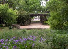 Coker Arboretum at UNC is managed by the North Carolina Botanical Garden.