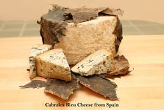 Cabrales cheese is wrapped in Sycamore leaves, a tradition that began many years ago in northern Spain.