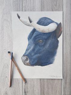"""""""La belle bleue"""" Portrait vache d'Hérens aux crayons pastel sur papier 23x30cm par Rud'art Création Crayon Canvas, Crayon Decorations, Crayon Template, Crayon Storage, Crayons Pastel, Crayon Shin Chan, Portrait, Most Beautiful Pictures"""