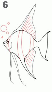 how to draw an angel fish. also several other step by step tutorials for drawing animals