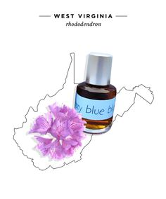 West Virginia State Flower: Rhododendron  Fragrance: Skye Botanicals Fuzzy Blue Blanket, $84 for 0.4oz  Like the name implies, Fuzzy Blue Blanket includes notes of West Virginia's state flower for a cozy, warm floral scent.