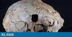 Un cráneo agujereado por un martillo hidráulico 400.000 años después de la muerte | Ciencia | EL PAÍS