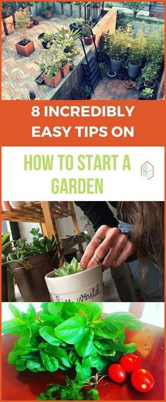 8 Incredibly Easy Tips on How to Start A Garden. Do you know how to start a garden? Starting a garden in your backyard is really simple than you think. Follow these easy, effective and proven tips. #urbangardening #urbanfarming #gardening #diy #garden #ugrpost