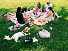 Have a picnic in Sheeps Meadow - things to do in Central Park, New York City