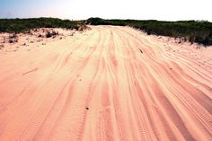 on my way to the sunken forest Fire Island, Country Roads, Journey