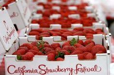 California Strawberry Festival- photo via Girl Loves Food blog.