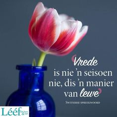 Inspiration For The Day, Afrikaans, Glass Vase, Inspirational Quotes, Words, Quotes Inspirational, Inspiring Quotes, Afrikaans Language, Inspiration Quotes