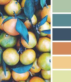 Renkleri kullanmak, renklerdeki uyumu bilmek hiç kimsenin doğuştan edindiği bir yetenek değildir. Yani öğrenilebilen bir şeydir.