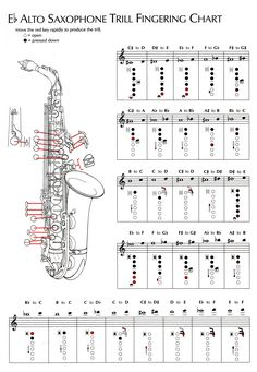 Alto Sax Imagine Me Kirk Franklin Sheet Music Chords amp Vocals Saxophone Notes, Saxophone Music, Music Chords, Tenor Sax, Audio Music, Alto Saxophone Fingering Chart, Popular Piano Sheet Music, Alto Sax Sheet Music, Saxophones