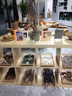 from 'Flights of Whimsy' - bringing natural elements into the classroom