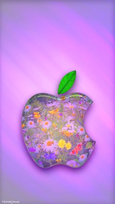 Daisy Garden Apple Logo Apple iPhone 5s hd wallpapers available for free download.