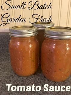 You don't need to wait until you have 20 pounds of tomatoes to make up some garden fresh sauce! Check out this great small batch fresh tomato sauce Pasta Sauce With Fresh Tomatoes, Fresh Tomato Sauce Recipe, Fresh Salsa Recipe, Roasted Tomato Sauce, Small Tomatoes, Homemade Tomato Sauce, Canning Homemade Spaghetti Sauce, Growing Tomatoes, Canning Cherry Tomatoes