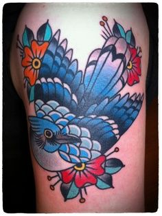 Traditional American Blue jay