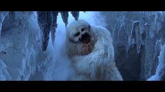 Bekannterweise verliert Luke Skywalker rechte Hand, doch auch andere Charaktere haben in Star Wars Gliedmassen verloren. Video-Editor Pablo Fernández Eyre zeigt uns in diesem Supercut alle Amputationen mit Lichtschwertern im Laufe Star Wars Saga. Insgesamt sind es 26 nach meiner Schätzung