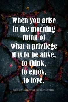 When you arise in the morning think of what a privilege it is to be alive, to think, to enjoy, to love.