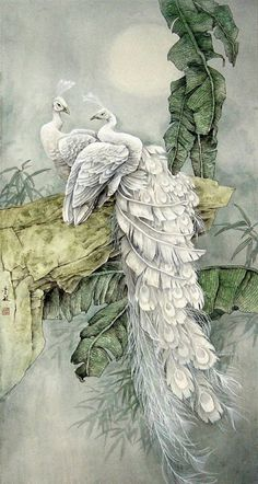 Japanese Painting, Chinese Painting, Chinese Art, Japanese Art, Peacock Wall Art, Peacock Painting, Dora Carrington, Peacock Images, White Peacock