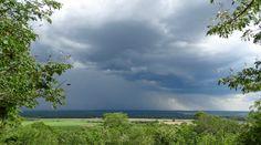 A favourite SavannaBel post - www.savannabel.com 😊 #petrichor #thatsmell #rain #renewal #zambezivalley #zambia