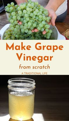 Learn to make grape vinegar from scratch! How To Make Vinegar, How To Make Oil, Pickled Cauliflower, Cauliflower Recipes, Infused Sugar, Homemade Apple Cider, Fermentation Recipes, Flavored Oils, Recipes