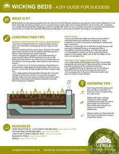 From the Bottom Up – A DIY Guide to Wicking Beds – Verge Permaculture Wicking Garden Bed, Wicking Beds, Veg Garden, Garden Care, Veggie Gardens, Vegetable Gardening, Organic Gardening, Self Watering Containers, How To Make Water