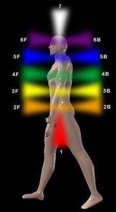 "This image shows how the chakras extend outward from our physical bodies. Most of the chakras extend forward and backward, as a spinning cone-shaped vortex of energy. The root chakra extends downward, connecting us to the earth while ""grounding"" us. The crown chakra extends upward to our higher self and the spiritual planes, connecting us to the divine!"