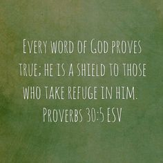 Every word of God proves true; he is a shield to those who take refuge in him. Proverbs 30:5 ESV