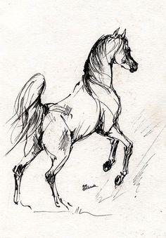 Horse Drawing - Horse Sketch 30 07 2013 by Angel Tarantella Horse Drawings, Art Drawings Sketches, Animal Drawings, Tattoo Drawings, Painted Horses, Sketch Painting, Sketch Drawing, Sketching, Drawing Art