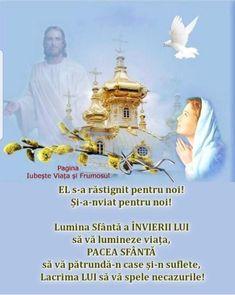 Pray, Movies, Movie Posters, Films, Film Poster, Cinema, Movie, Film, Movie Quotes