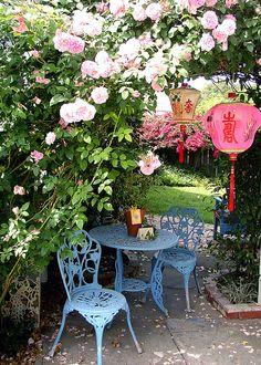 My friend Kathleen's garden at her old house in Astoria