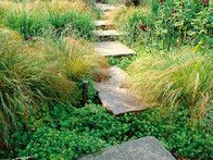 Irregular pathway steps are softened by side plantings of ornamental grasses through this informal garden setting.