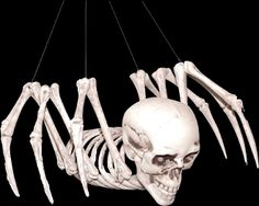 Creepy MUTANT HYBRID HUMAN SPIDER SKELETON Prop Building Mad Scientist Laboratory Monster. Scary Human Skull Head Creature with Spider Body. Moving head and legs, hanging strings. Spooky frightening gothic haunted house Halloween party decoration. http://www.horror-hall.com/Mutant-Hybrid-SKELETON-SPIDER-Human-Skull-Horror-Monster-Prop-HH-MR-SS-71013.htm