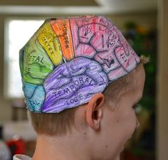 A school of fish: Brain hats (cerebral cortex) Kid Science, Science Projects For Kids, Science Fair, Teaching Science, Teaching Kids, Science Museum, Science Classroom, Biology Projects, Preschool Science