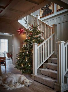 A Stylish Scandinavian Christmas Home - The Nordroom Zara Home Christmas, Ikea Christmas, Christmas Interiors, Cozy Christmas, Blue Christmas, Christmas Tables, Modern Christmas, Simple Christmas, Christmas Gifts