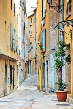 """Grasse, on the French Riviera, is known as the """"Perfume Capital"""" of the world. A Jasmine Festival is held in August."""