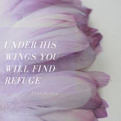 He will cover you with his FEATHERS and under His WINGS you will find REFUGE!!! Psalm 91:4  Favorite verse!