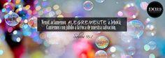 PORTADA FB 19