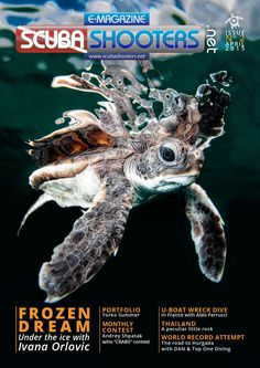 Scubashooters.net e-mag issue n2 april 2015  Read the 2nd issue and enjoy Yorko Summer's superb portfolio, dive under the Ice with Ivana Orlovic or learn UW photo techniques with Octay Calisir.
