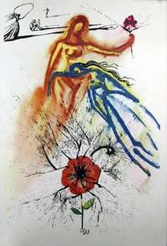 Salvador Dali, 'Alice in Wonderland,' 1969 - I love the poppy in this print, capturing both the desire and danger permeating throughout Alice's adventures... xx