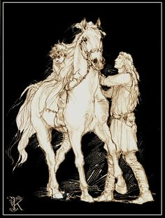 http://markreads.net/reviews/2012/01/mark-reads-the-fellowship-of-the-ring-chapter-12/