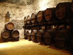 """Visit Jerez, Spain to taste all different kinds of sherry.  One of my favorites """"Tio Pepe"""" is made by the Gonzalez Byass house and it is worth the train ride!"""