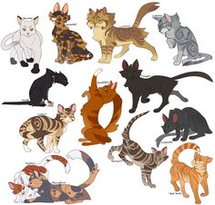 image for warrior cats thunderclan cat names warrior cats