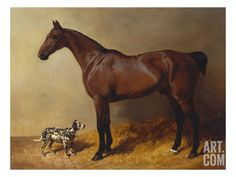 A Bay Hunter and a Spotted Dog in a Stable Interior Print by John Frederick Herring I at Art.com