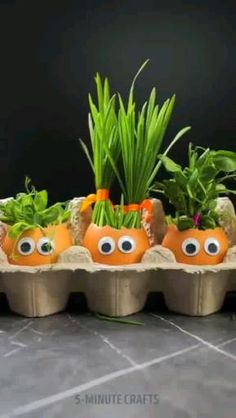 Short film by Regrow Vegetables, Growing Vegetables, Growing Gardens, Growing Herbs, Grafting Plants, Comment Planter, Home Vegetable Garden, Permaculture, Garden Projects