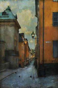 jamie heiden The Shoemaker's corner.The Streets of Gamla Stan, Stockholm, Sweden Landscape Artwork, City Landscape, Fantasy Landscape, Artwork For Home, Home Art, Building Illustration, Illustration Art, Moonlight Painting, Pictures To Paint