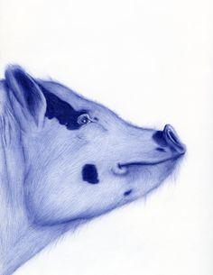Portrait drawn with a BIC-pen