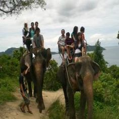 This tour offers departures every morning and afternoon. You will be picked up from your hotel and travel by four wheel drive jeep to Siam Safari elephant camp on Chalong Highlands. The elephant camp and trek are on top of a mountain in a superb natural setting. Upon arrival you will receive information about Siam Safari's elephant conservation project and go on to explore the hills and its beautiful panoramic views over Phuket Island riding on an elephant back. If you are lucky you may see…