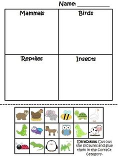 animal classification worksheet science pinterest animal classification worksheets and. Black Bedroom Furniture Sets. Home Design Ideas