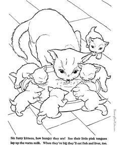Animal Coloring Pages For Adults | Cat coloring page - Farm Animals to print and color 009